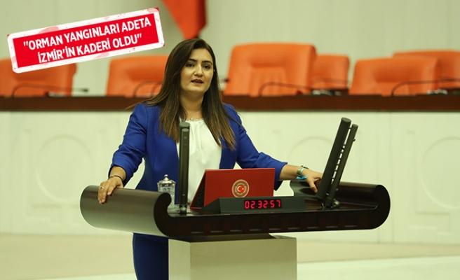 CHP'li vekil Kılıç'tan 'yangın' isyanı
