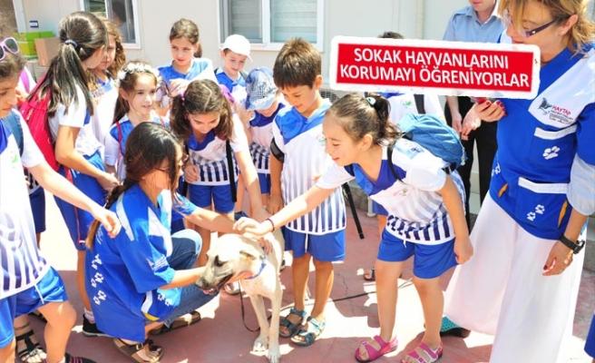 Çocuklar, yaz okullarını çok sevdiler
