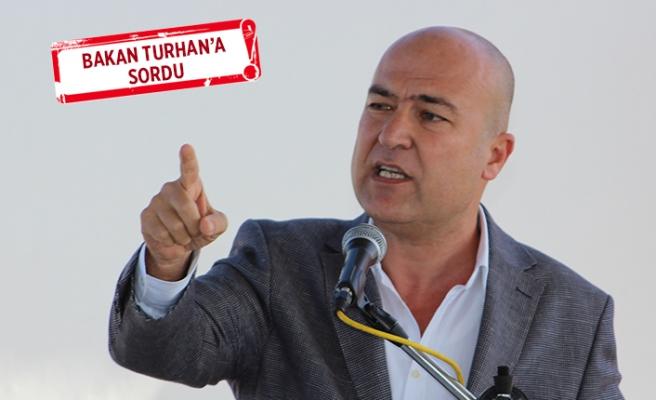 CHP'li Bakan: Çandarlı Limanı 'vaadi' yalan olmuştur!