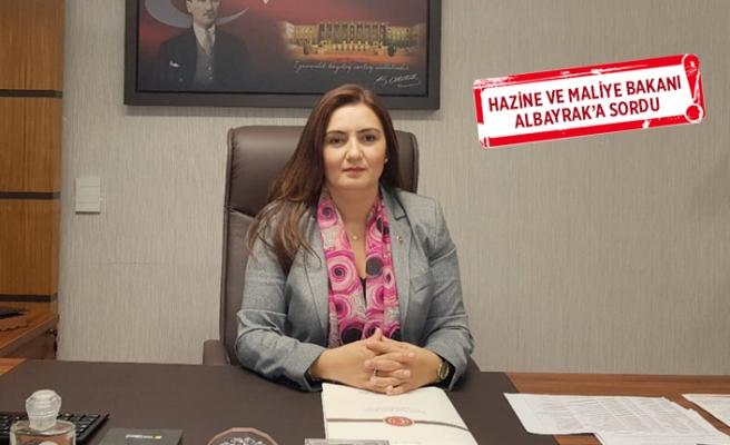 CHP'li Kılıç 'Yap-İşlet-Devret' modelini mercek altına aldı