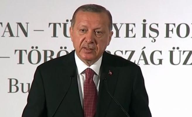Erdoğan'dan Macaristan'da önemli mesajlar