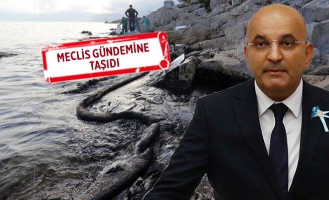 CHP'li Polat'tan 'çevre katliamı' çıkışı