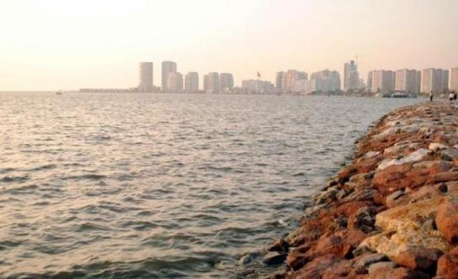 İzmir'de suyun yüzeyini kaplayan 'deniz marulu' temizlendi