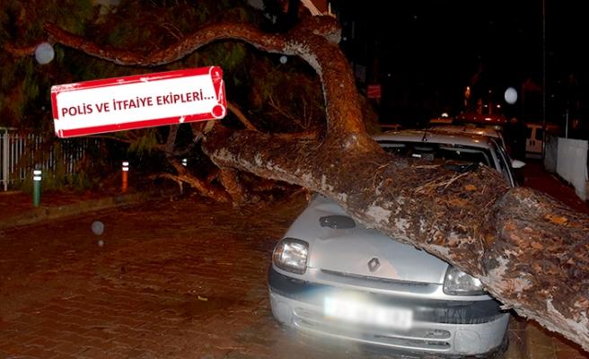 İzmir'de gece yarısı korkutan ses: Yerinden söküldü