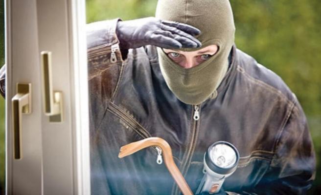 Yayla hırsızı yakalandı