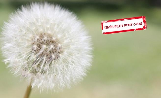 Meteoroloji 'polen' tahmininde de bulunacak