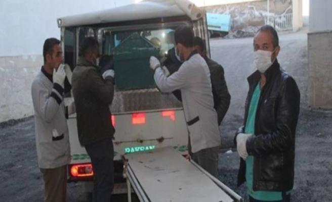Karlar eriyince 6 erkek cesedi bulundu