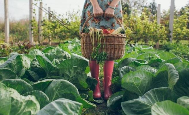 """Organik tarımın öncüleri """"6. Organik Tarım Sempozyumu""""nda"""