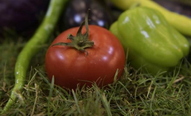 Organik tarımın öncüsü 10. Ekoloji İzmir Fuarı