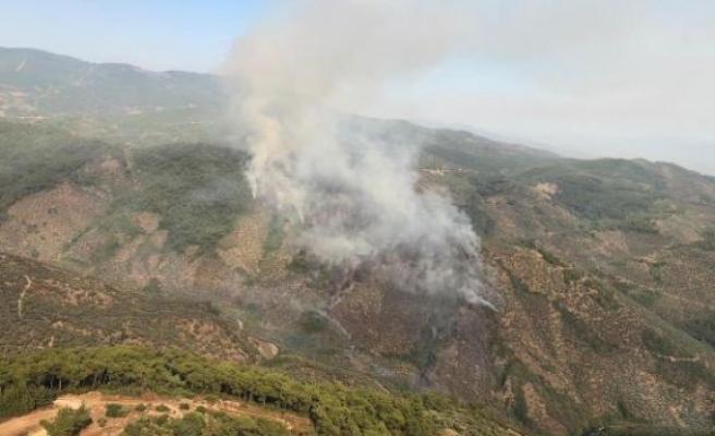 Bayındır'da bahçelerin bulunduğu bölgede yangın
