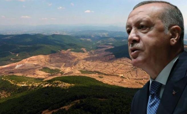 Erdoğan'dan Kaz Dağları'na gitme kararı