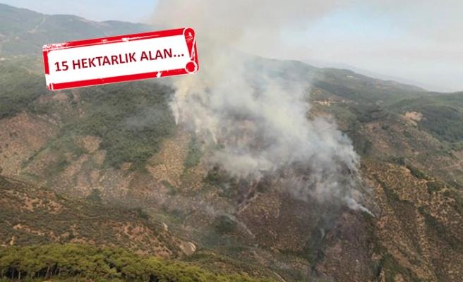 İzmir'deki orman yangınında 'piknik ateşi' iddiası