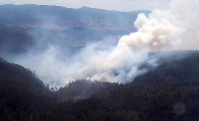 O yangınla ilgili flaş açıklama: 'Sabotaj ihtimalini doğruluyor'
