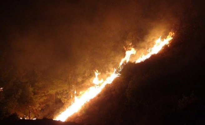 Hatay'da 25 farklı noktada orman yangını!