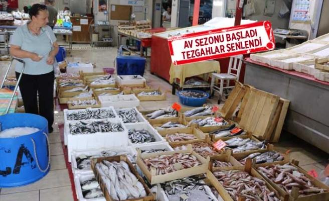 Yasak bitti, Foçalı balıkçının ve vatandaşın yüzü güldü