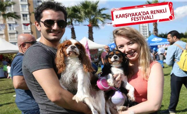 3 bin hayvansever Pati Fest'te buluştu