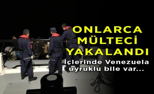 İzmir'de onlarca mülteci yakalandı!