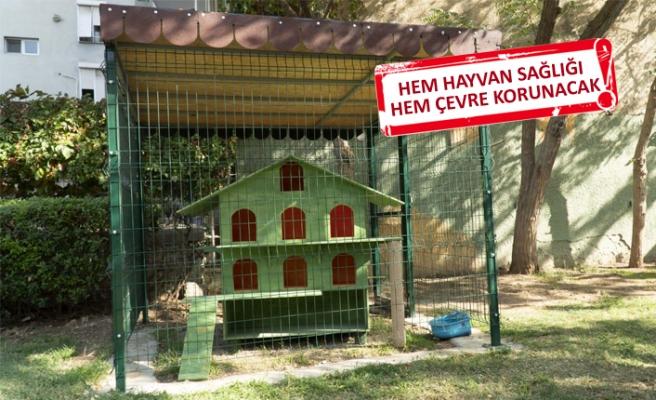Karşıyaka'nın kedi evleri koruma altında