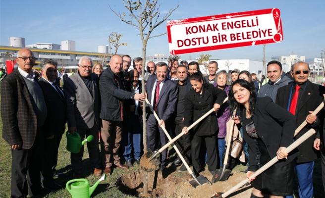 Engelsiz bir dünya için ağaç diktiler