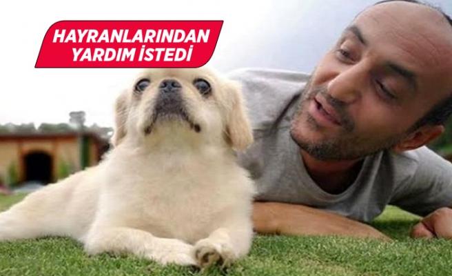 Survivor Ersin Korkut yeni köpeğinin fotoğrafını paylaştı!
