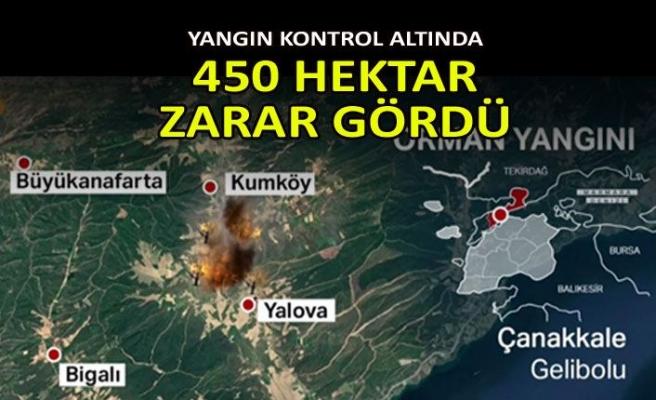 Gelibolu Yarımadası'nda orman yangını: Bakan Pakdemirli son durumu açıkladı