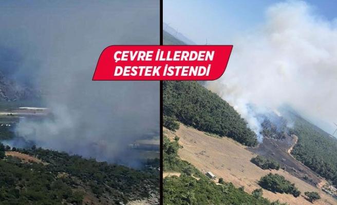 İzmir ve Muğla'da peş peşe orman yangınları