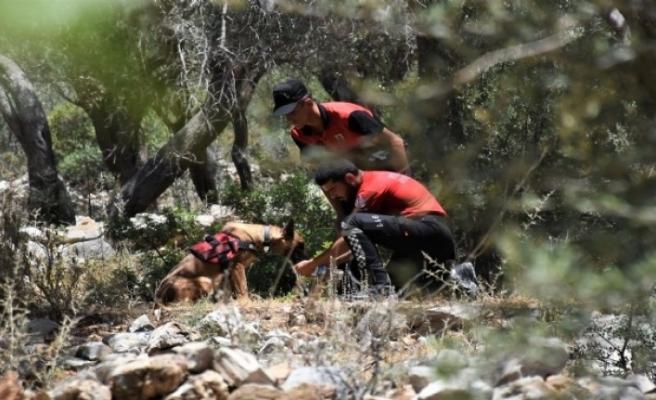 Muğla'da tershanenin köpekleri kafatası buldu!