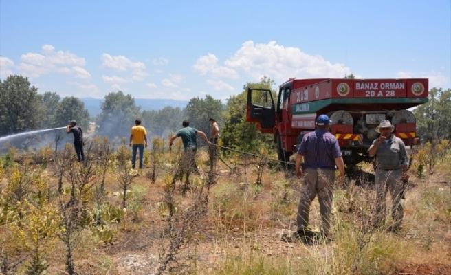 Uşak'ta çıkan yangında 70 dekar ekili alan zarar gördü