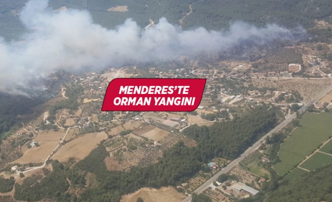 İzmir'in Menderes ilçesinde orman yangını çıktı