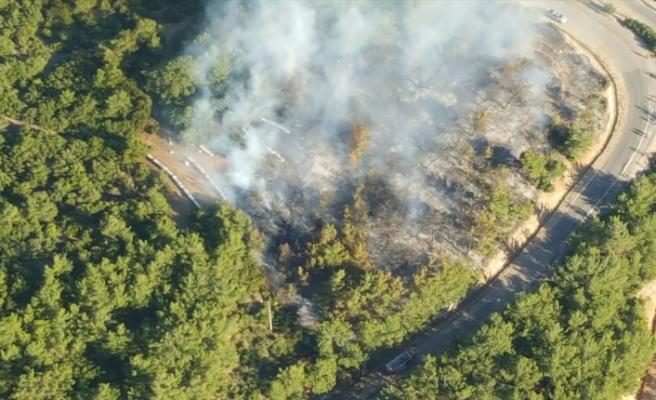 Kemalpaşa'da çıkan orman yangını kontrol altına alındı