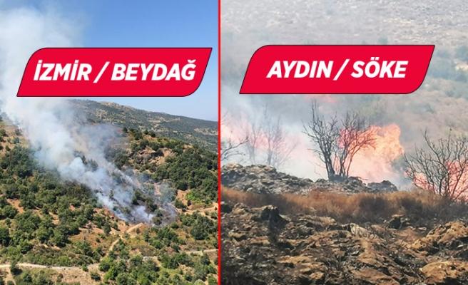 İzmir Bergama ve Aydın Söke'de orman yangını!