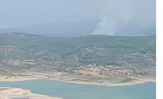Muğla'da çıkan orman yangını söndürüldü
