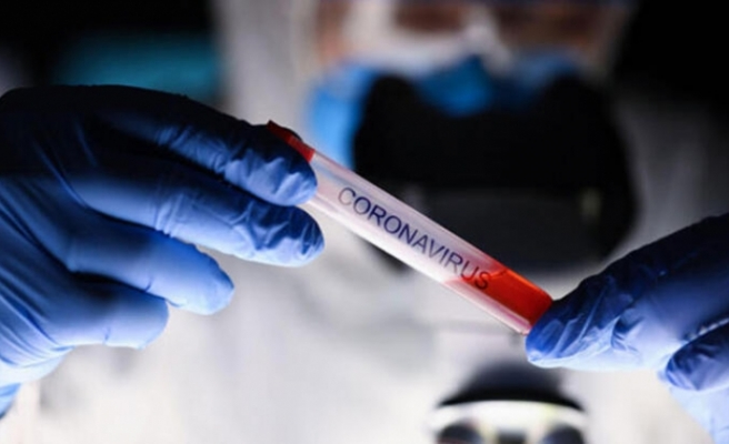 Koronavirüs, Türkçeyi de etkiledi... 'Yeni normal, kontrollü sosyal hayat...'