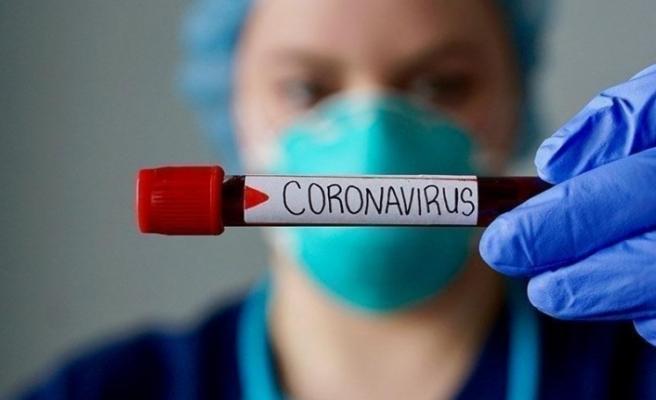 Lise öğrencisinden coronaya karşı müthiş keşif