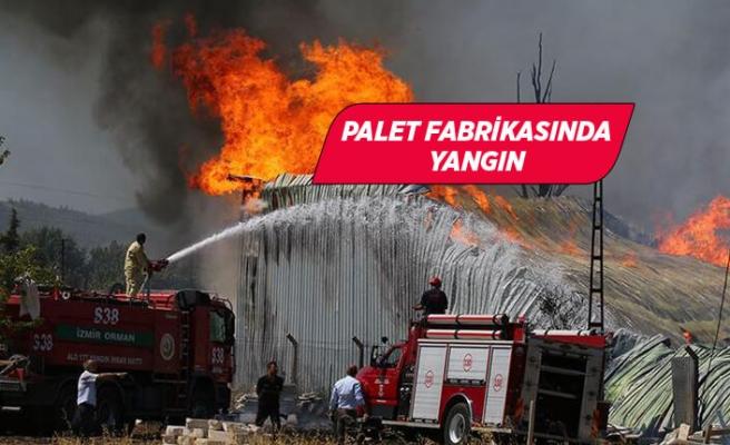 İzmir'de palet fabrikasında yangın!