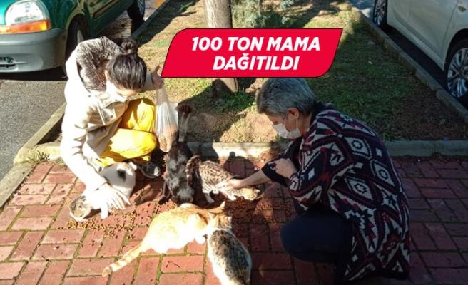 İzmir Valiliği öncülüğünde sokak hayvanları için 100 ton mama