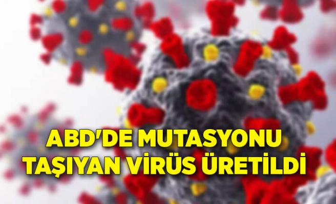 ABD'de Güney Afrika'dan çıkan mutasyonu taşıyan virüs üretildi