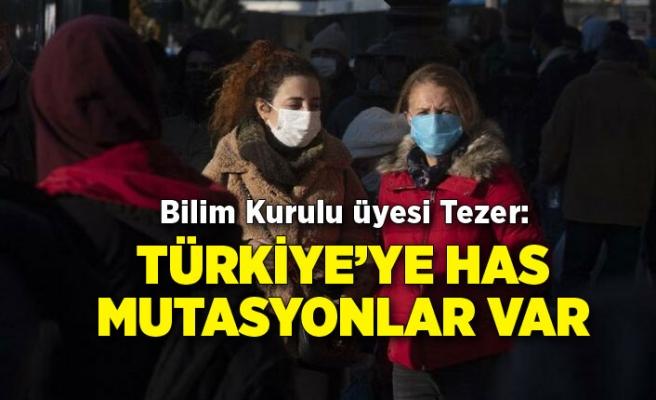 Bilim Kurulu üyesi Tezer: Türkiye'ye has mutasyonlar var