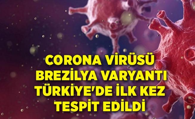 Corona virüsün Brezilya varyantı Türkiye'de ilk kez tespit edildi