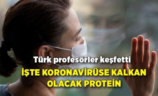 Türk profesörler keşfetti: İşte koronavirüse kalkan olacak protein