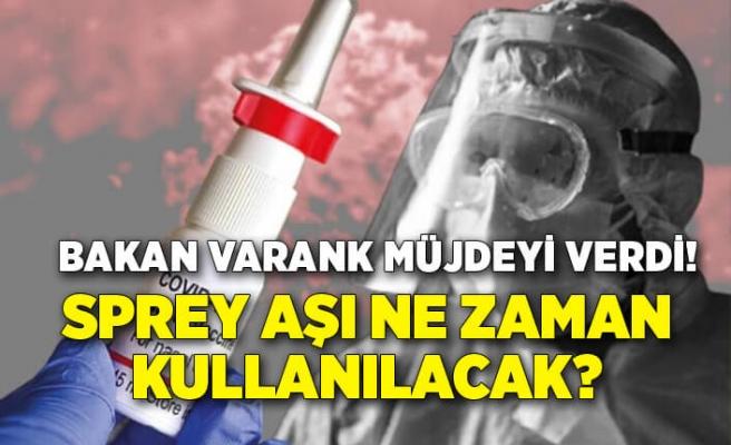 Bakan Varank: Sprey aşının yıl içinde kullanıma sunulmasını hedefliyoruz