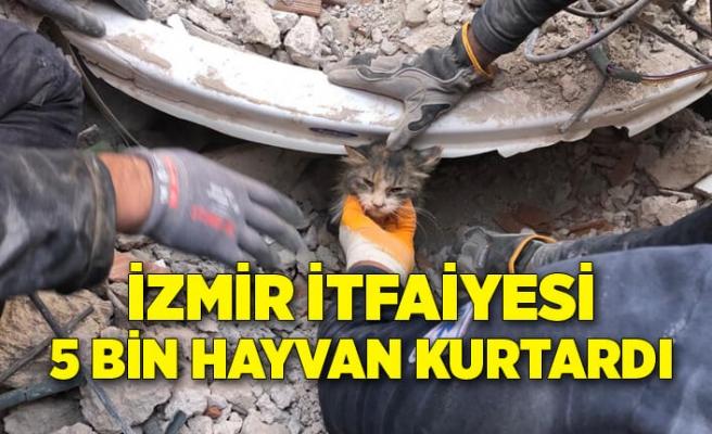 İzmir itfaiyesi 5 bin hayvan kurtardı
