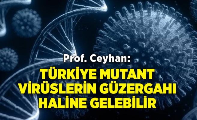Prof. Ceyhan: Türkiye mutant virüslerin güzergahı haline gelebilir