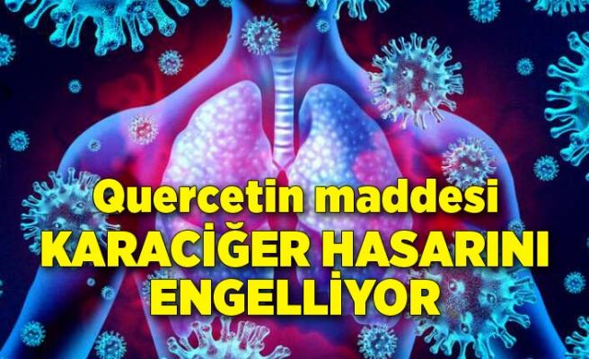 Quercetin maddesi koronavirüste akciğer hasarını engelliyor