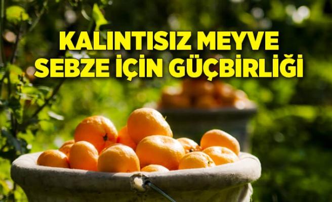Tarım ve Orman Bakanlığı ile Ege Yaş Meyve Sebze İhracatçıları Birliği güç birliği yapacak