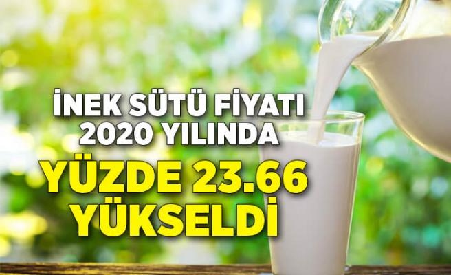 TÜİK - İnek sütü fiyatı 2020 yılında yüzde 23.66 yükseldi
