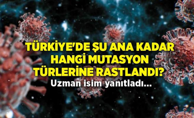 Türkiye'de şu ana hangi mutasyon türlerine rastlandı? Uzman isim yanıtladı