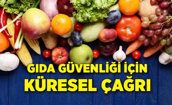 Yaş meyve sebze sektöründen gıda güvenliği için küresel çağrı