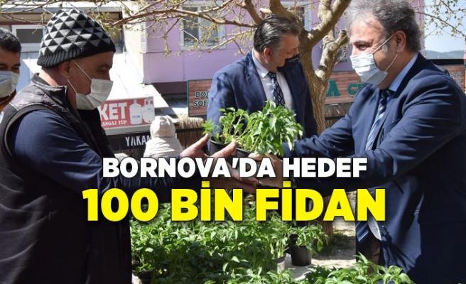 Bornova'da hedef 100 bin fidan
