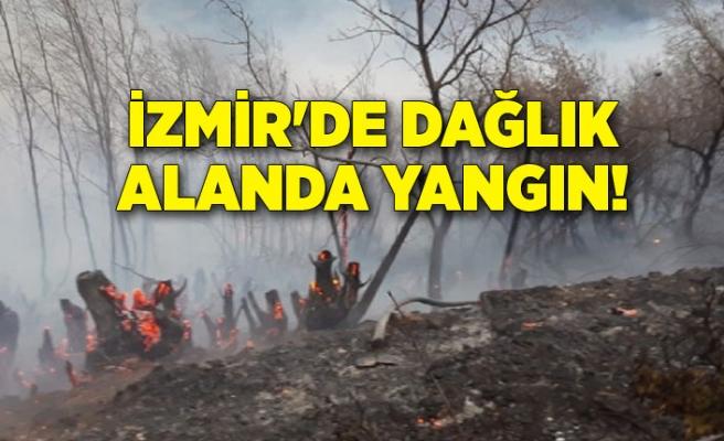 İzmir'de dağlık alanda yangın!